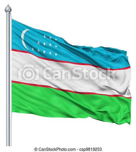 Waving flag of Uzbekistan - csp9819253