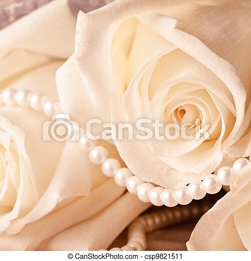 Pearl beads and cream rose - csp9821511
