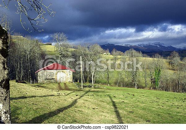 Rural landscape - csp9822021