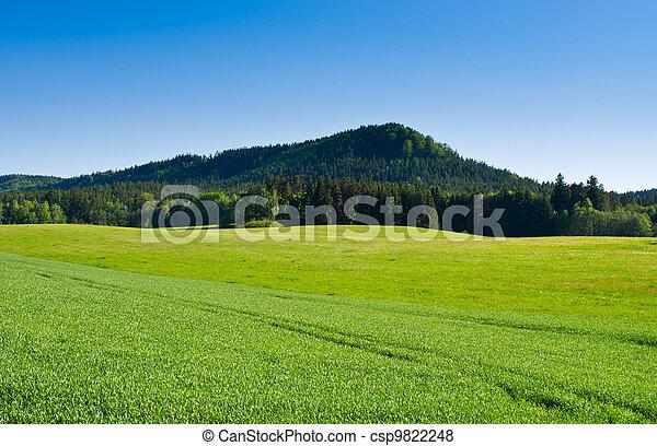 Fresh spring scenery - csp9822248