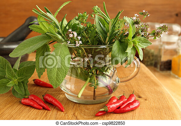 Aromatic herbs - csp9822850