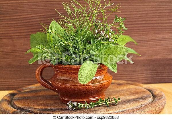 Aromatic herbs - csp9822853