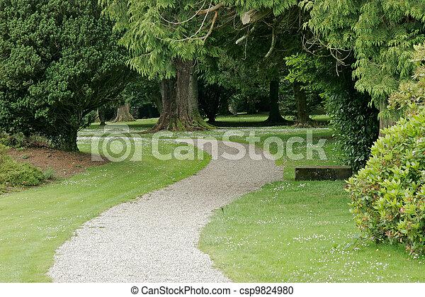 Tranquil park - csp9824980