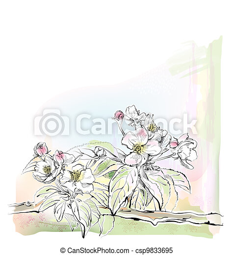 sketch of apple tree in bloom - csp9833695