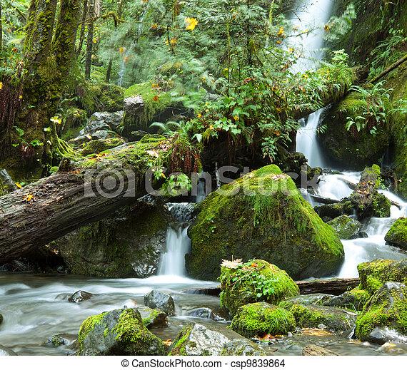 Waterfall - csp9839864