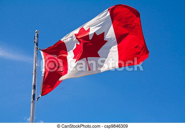 Canadian Flag - csp9846309