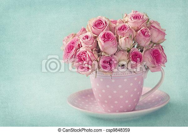 Pink rose - csp9848359