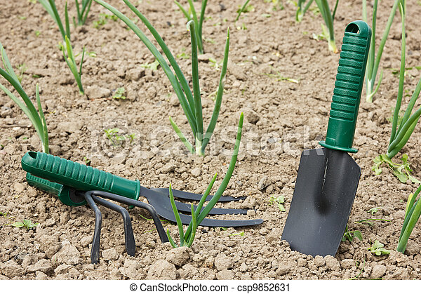 tools in a garden - csp9852631