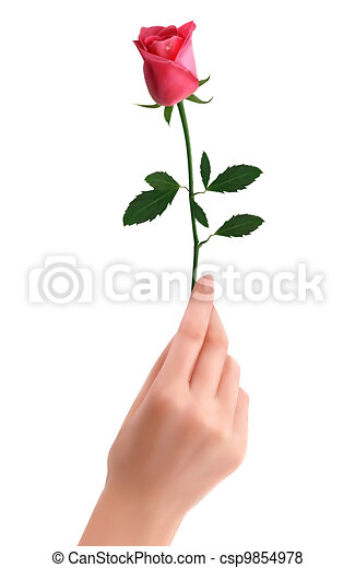 Vector of hand holding red rose vector csp9854978 search for Hand holding a rose drawing
