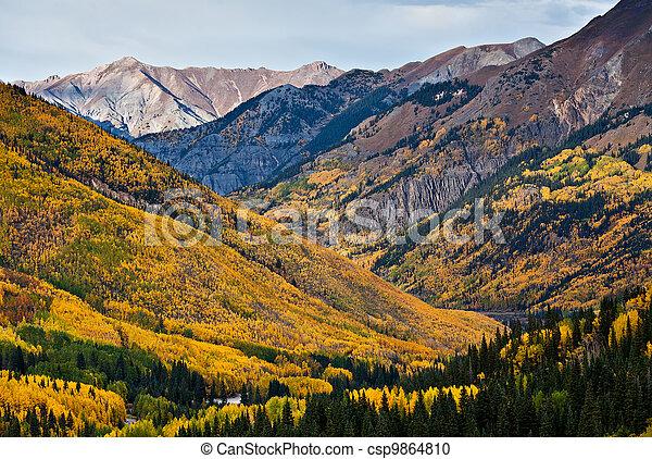 Aspen Forests Above Ouray, Colorado - csp9864810