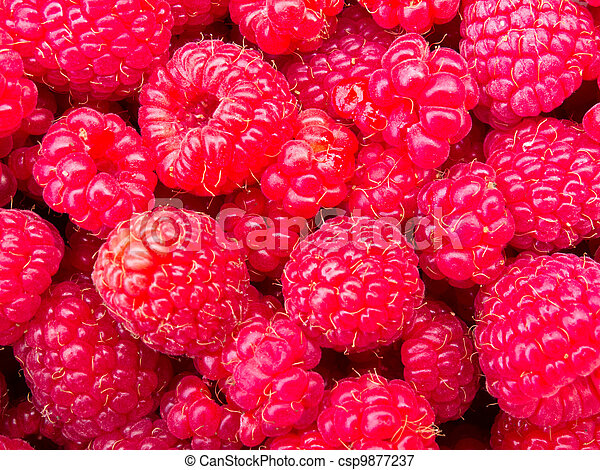 Juicy ripe raspberries background texture pattern - csp9877237
