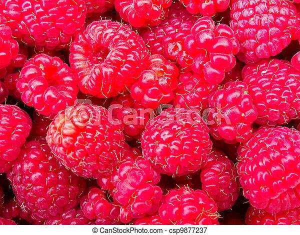 Juicy ripe raspberries background texture pattern - csp9877237