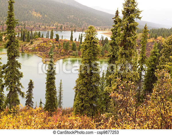 Fall rain on wilderness lake, Yukon T., Canada - csp9877253