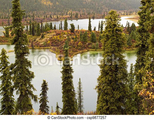 Fall rain on wilderness lake, Yukon T., Canada - csp9877257