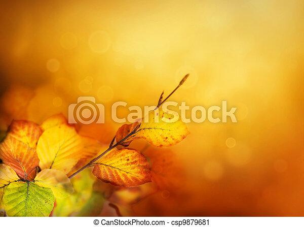 otoño, hojas - csp9879681