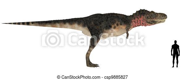 Tarbosaurus Size Comparison - csp9885827