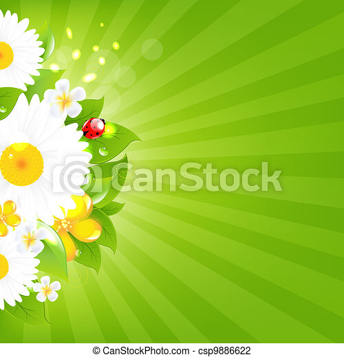 Bunch Of Flowers With Grass And Sunburst - csp9886622