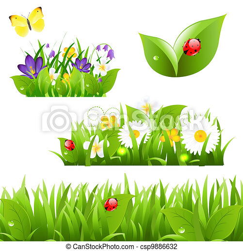 Flowers With Grass Butterfly And Ladybug - csp9886632