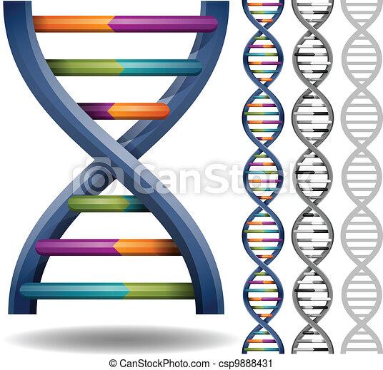 DNA - csp9888431
