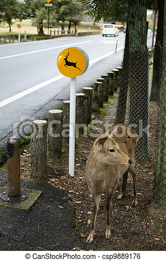 Beware the deers sign in Nara, Japan - csp9889176