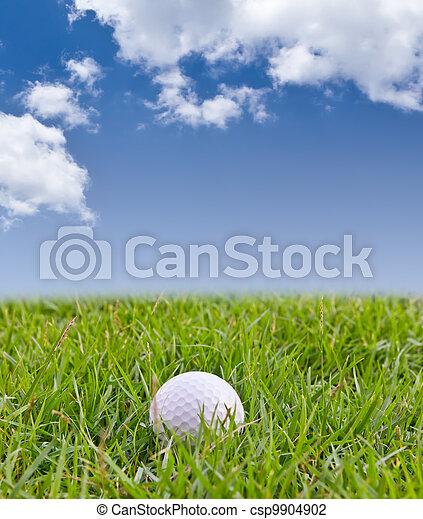 golf ball on tall grass