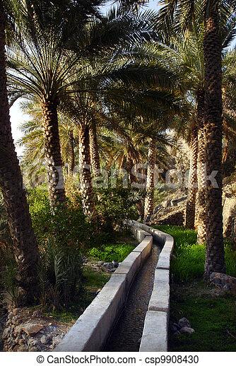 Al, Abreyeen, Misfah, oman - csp9908430