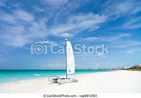 Stunning tropical beach - csp9912061