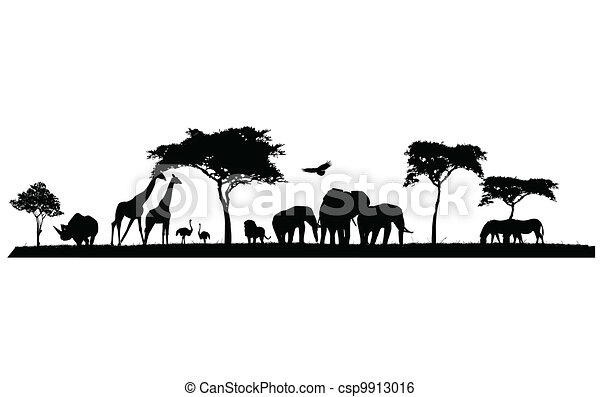 silhouette of wildlife - csp9913016