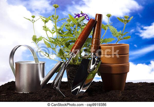 Gardening equipment with plants