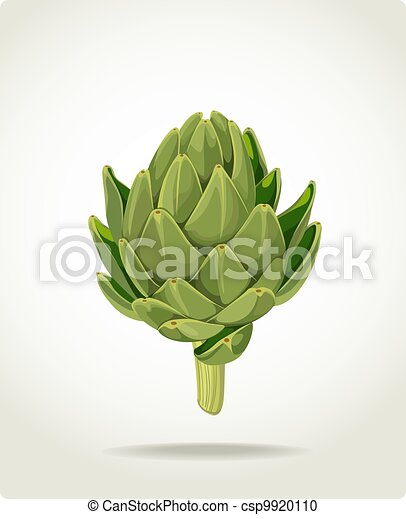 fresh useful eco-friendly artichoke - csp9920110