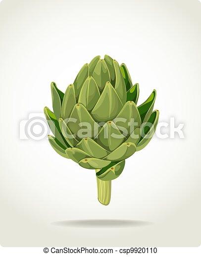fresh useful eco-friendly artichoke - csp9920110