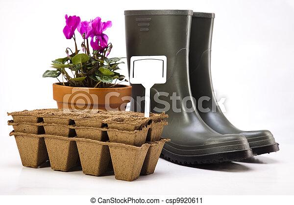 植物, 工具, 花園, 靴子 - csp9920611