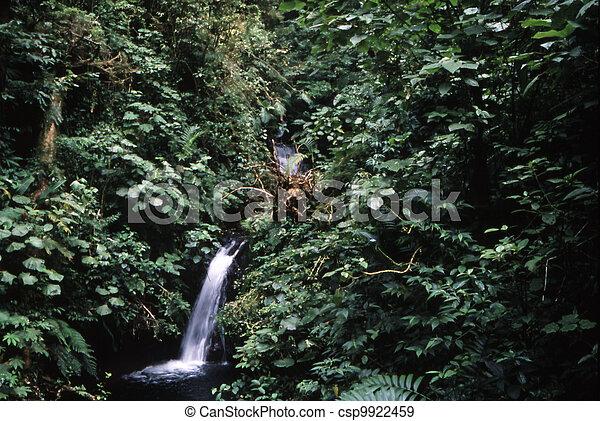 Costa Rica - csp9922459