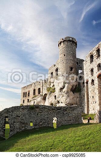 Castles of Poland. - csp9925085