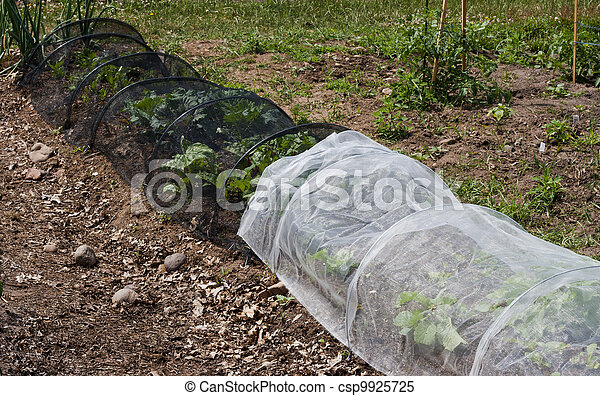 protective netting - csp9925725