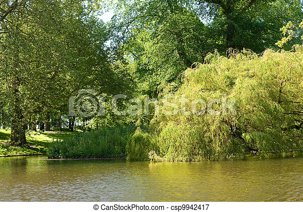 Pond in Het Park in Rotterdam - csp9942417