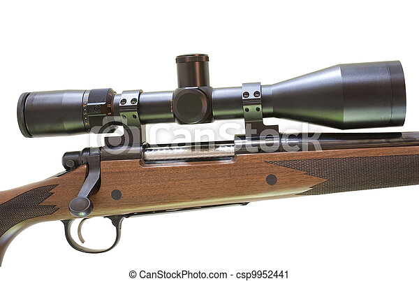 Rifle and scope - csp9952441