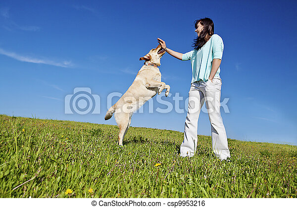 stock image of dog trainer  a young woman training her