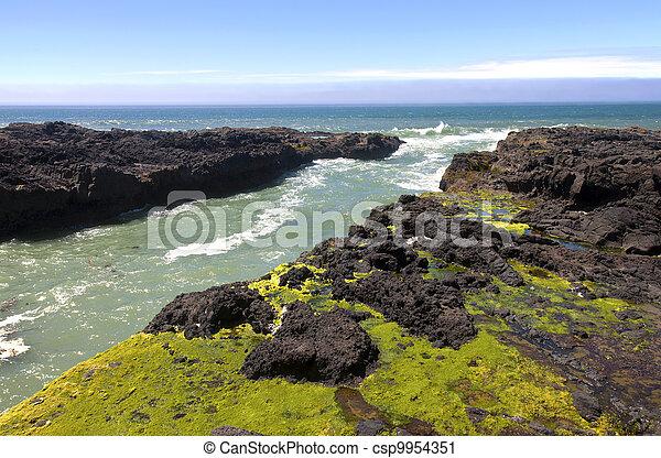 Rocky lava shoreline, Oregon coast. - csp9954351