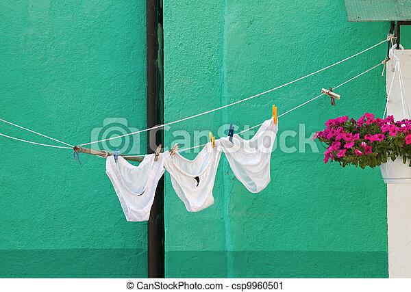 Drying Underwear. Stock Photo