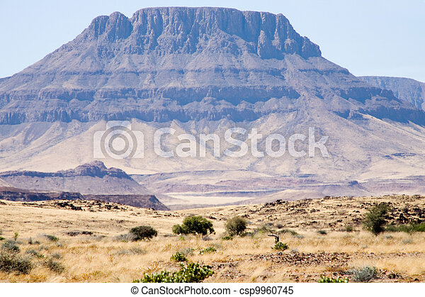 Wilderness in Namibia - csp9960745