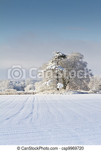 Field and woodland covered in snow on a sunny day in Dorset England
