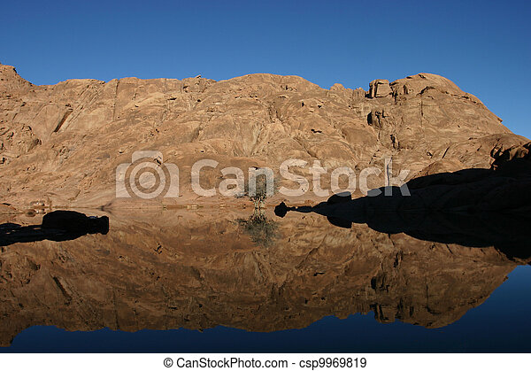 Wonderful lake in the desert of Sinai - csp9969819