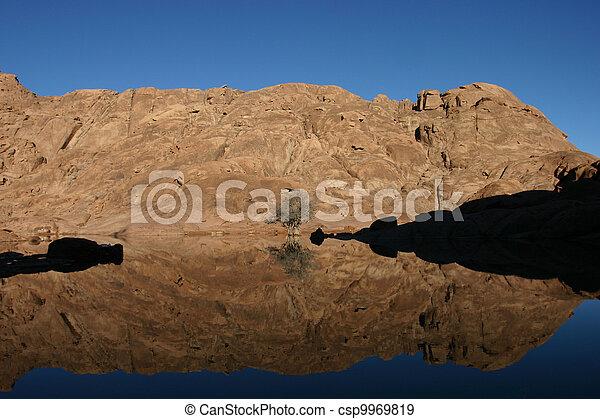 Wonderful lake in the desert of Sinai - csp9969819