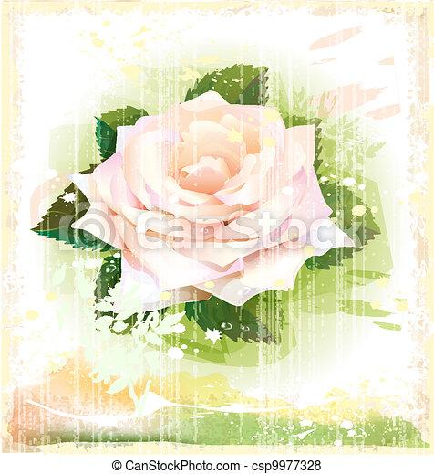 vintage illustration of pink rose - csp9977328