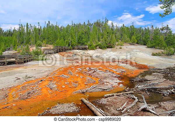Echinus Geyser Yellowstone - csp9989020
