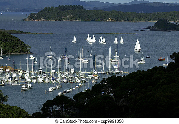 zealand, 新しい, 島, 湾 - csp9991058