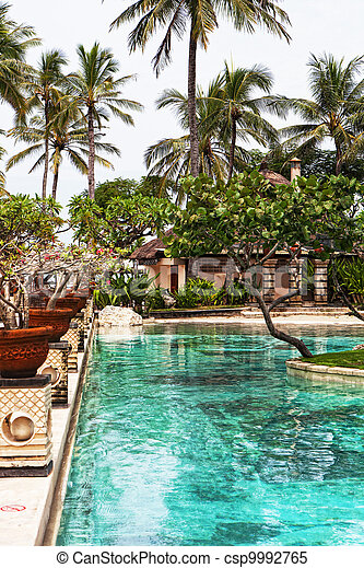 Palm trees near pool in tropics - csp9992765