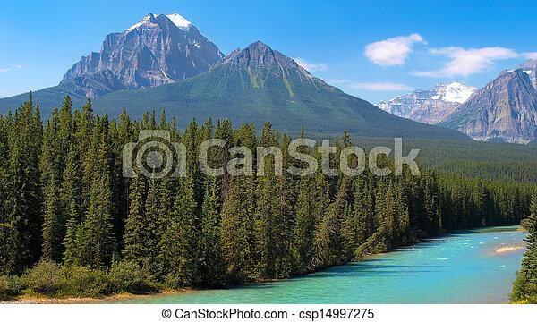 canadá, selva, banff, canadense, parque nacional, alberta - csp14997275