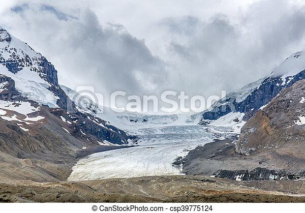 canada, 2016, columbia, nazionale, -, parco, diaspro, alberta, icefield - csp39775124